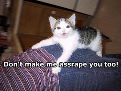 kittenassrape